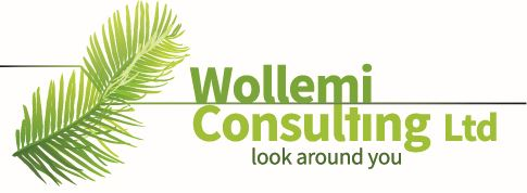 Wollemi Consulting